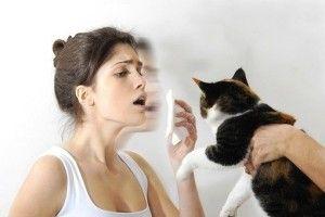 alergiia na werst