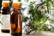 Ефірна олія розмарину: застосування, властивості