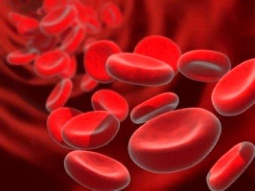 гемоглобін в крові