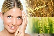 Масло зародків пшениці для обличчя, для волосся, застосування