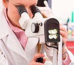Результати онкоцитологію: варіанти норми