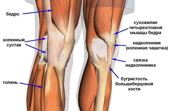 Тейпірованіе колінного суглоба