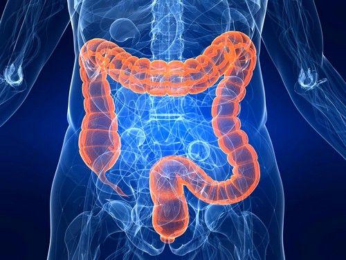 Запалення кишечника: симптоми і лікування