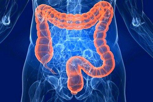 Захворювання кишечника: симптоми