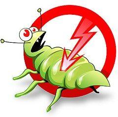 У житло людини комахи перетворюються в небезпечних шкідників, цим і пояснюється, навіщо потрібна дезінсекція приміщень