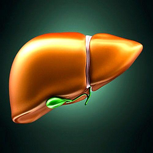 Жировий гепатоз печінки: симптоми і лікування